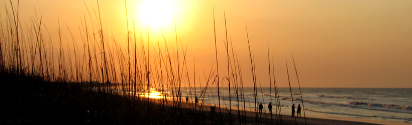 Isle Of Palms South Carolina Travel And Vacation Guide