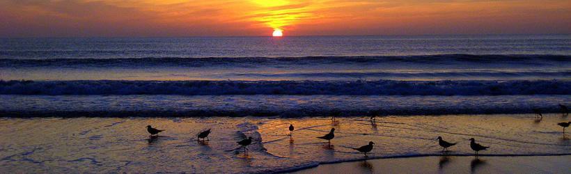 Myrtle Beach, South Carolina Weather Forecast / Climate